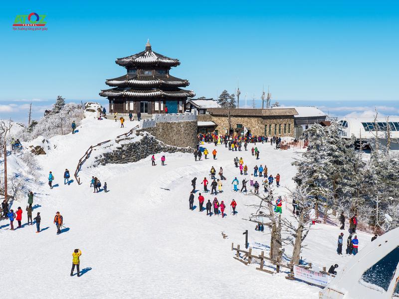 Tour Hàn Quốc trượt tuyết mùa đông: SEOUL – ĐẢO NAMI – ELYSIAN – LOTTE WORLD (7C)