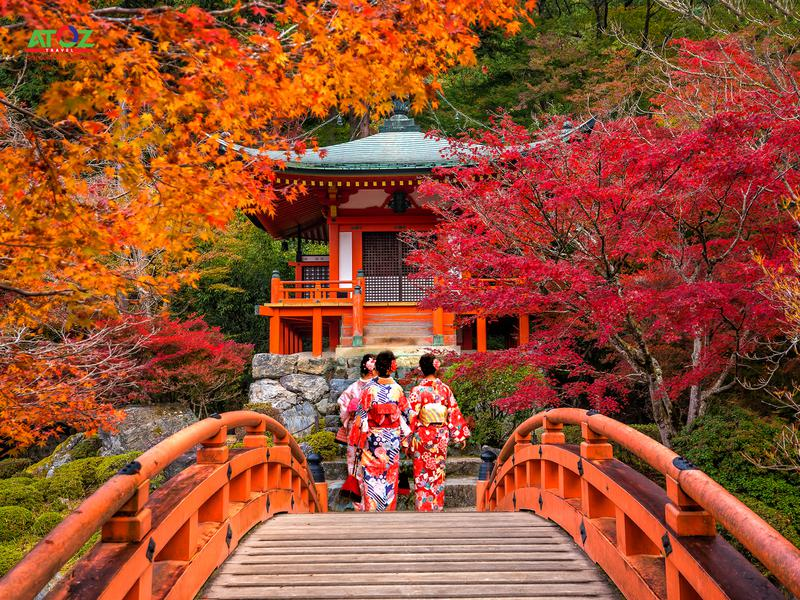 Tour Nhật Bản cung đường vàng mùa thu 2019: TOKYO – YAMANASHI – TOYOHASHI – KYOTO – OSAKA