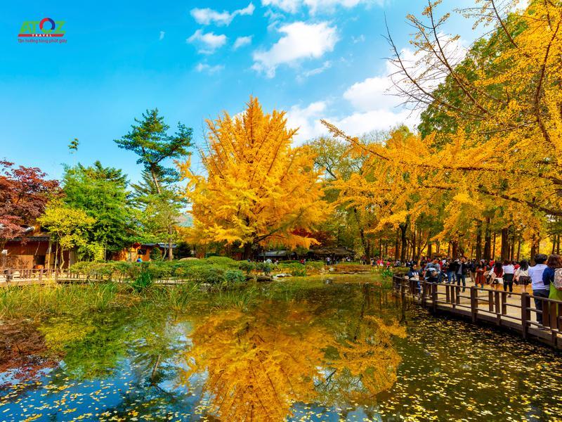 Tour Hàn Quốc mùa thu 2019: Seoul – ĐảoNami – Công viênEverland