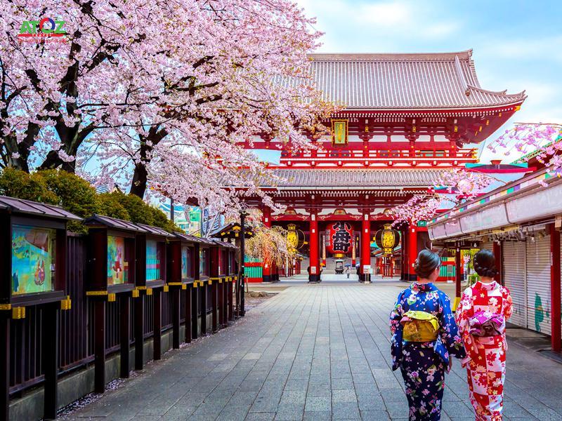 Trải nghiệm mùa hoa anh đào đầu tiên tại Nhật Bản