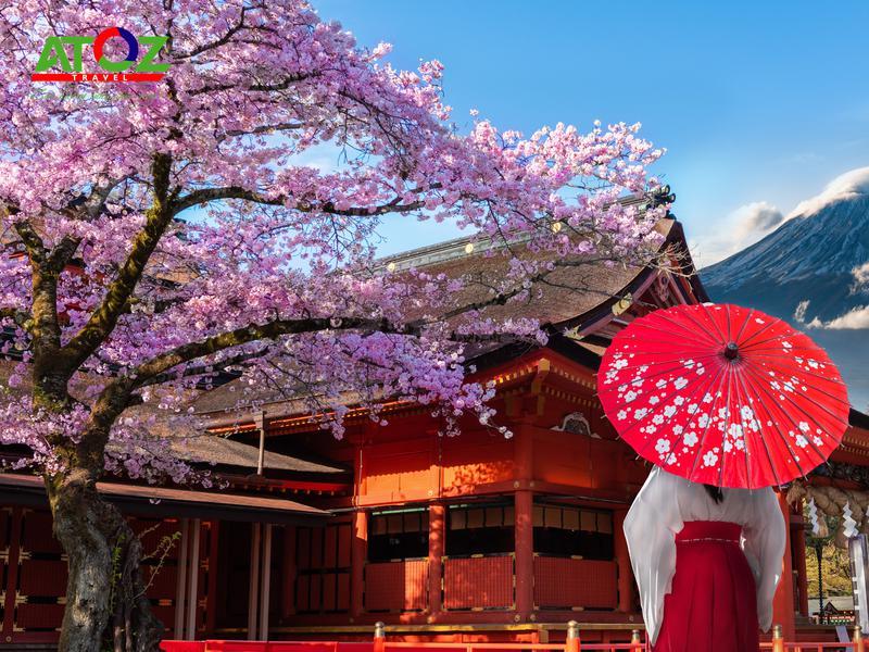 Tour Nhật Bản Cung Đường Vàng Mùa Hoa Anh Đào: Tokyo – Yamanashi – Fuji – Nagoya – Osaka – Kobe