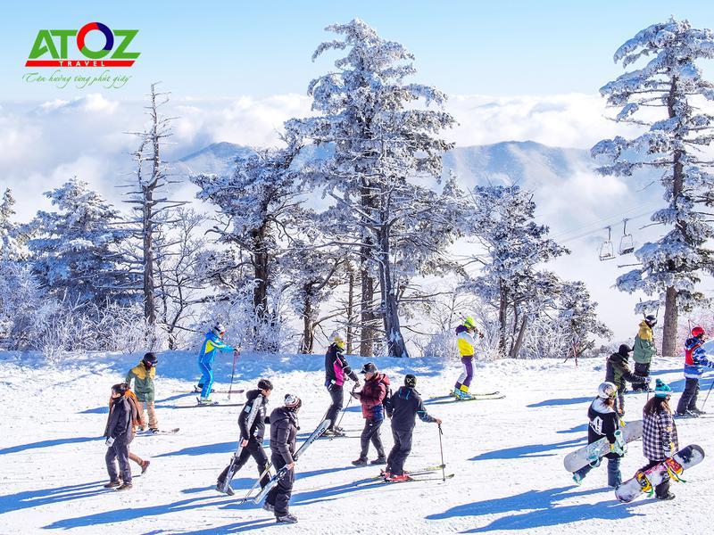 Tour Hàn Quốc tết 2020 (mùng 6): Seoul – Đảo Nami – Elysian – Lotte World (Tway Air)