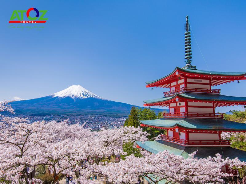 Tour Nhật Bản Cung Đường Vàng Mùa Hoa Anh Đào: Osaka – Nara – Kyoto – Toyohashi – Yamanashi - Tokyo