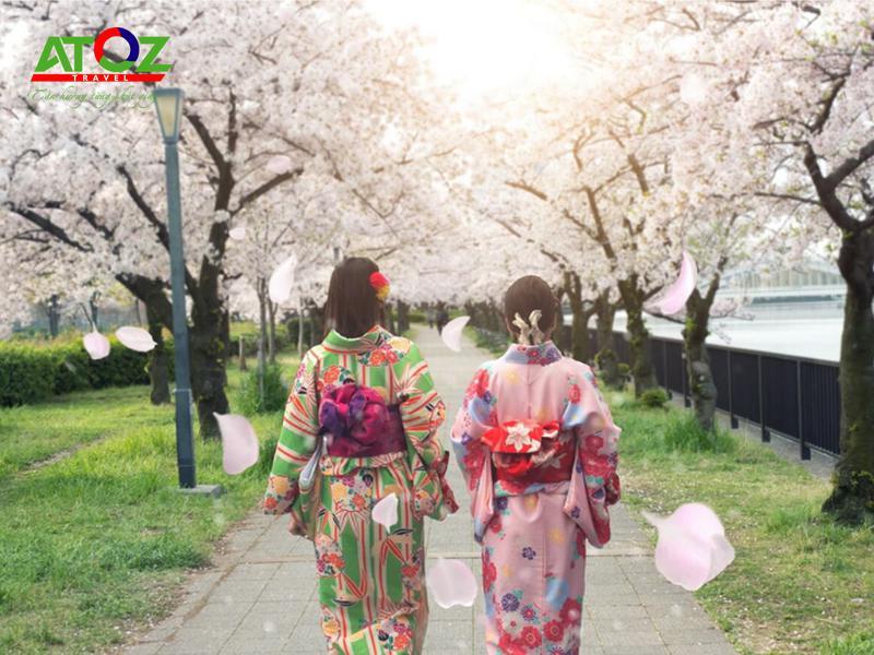 Những lưu ý khi ngắm hoa anh đào mùa cao điểm tại Nhật Bản