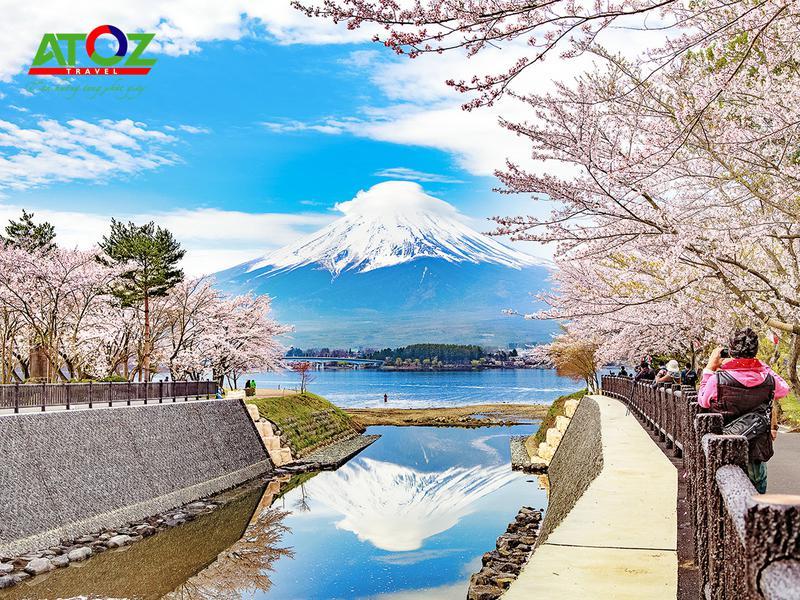 Tour Nhật Bản mùa hoa anh đào:  Ibaraki –Yamanashi– Tokyo