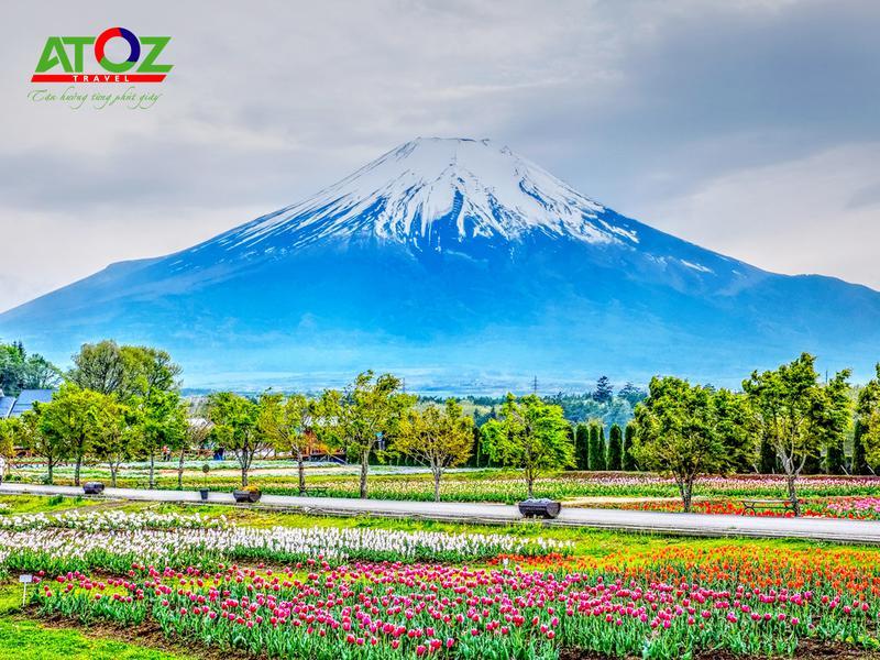 Tour Nhật Bản cung đường vàng mùa hè: Tokyo – Yamanashi – Toyohashi – Kyoto – Osaka – Kobe