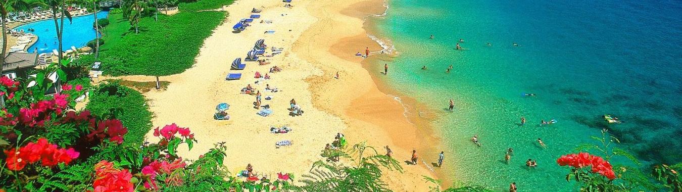 Đảo Hoa Lan
